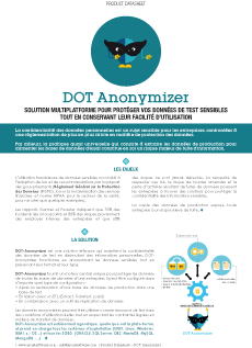 DOT-Anonymizer brochure thumbnail