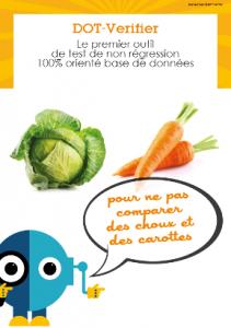 DOT-Verifier Brochure thumbnail